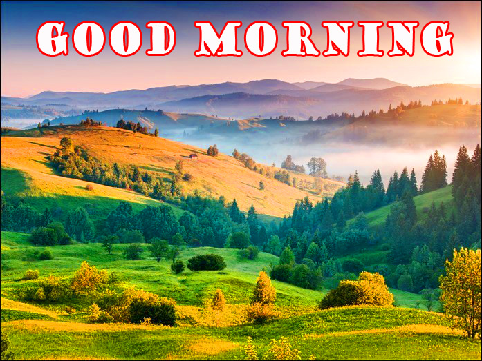 Good Morning Nature Wallpaper Pictures Images HD