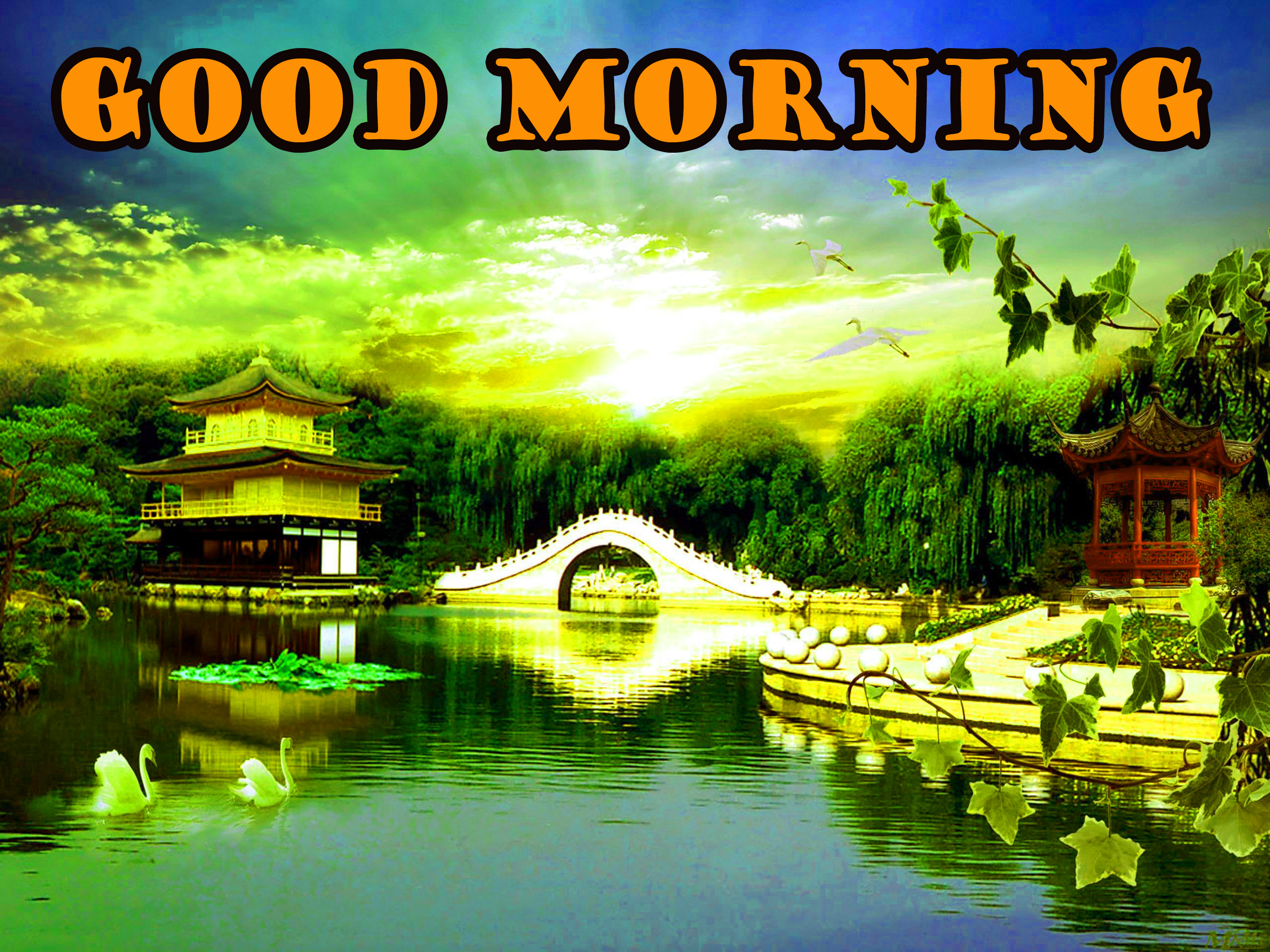 Good Morning Nature Wallpaper Pictures Images For Whatsapp