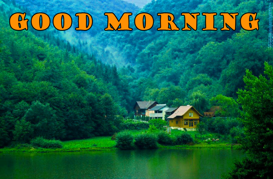 Good Morning Nature Photo Wallpaper Pictures Download