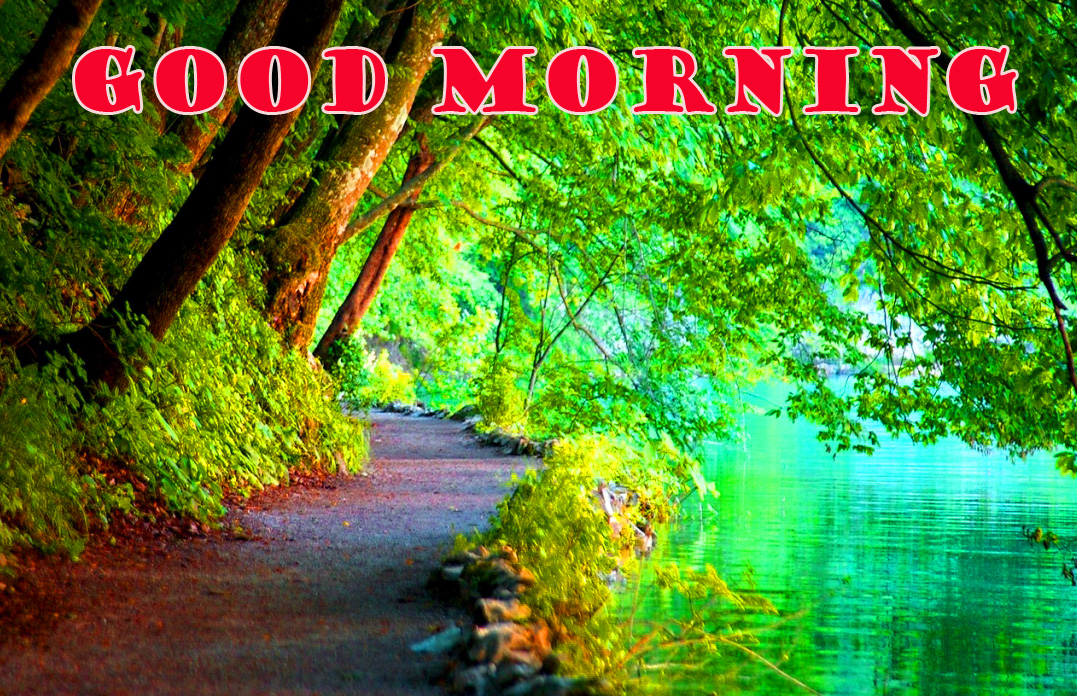 Good Morning Nature Pictures Images Photo Download