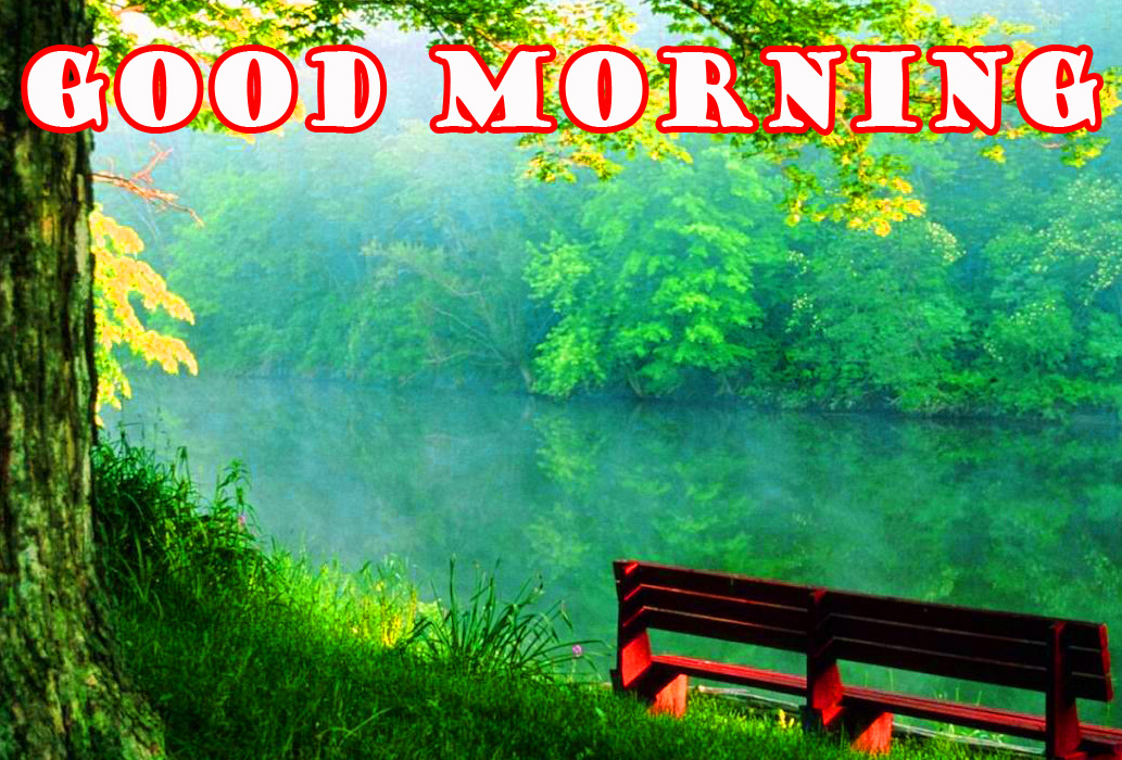 Good Morning Nature Pictures Images Wallpaper Download