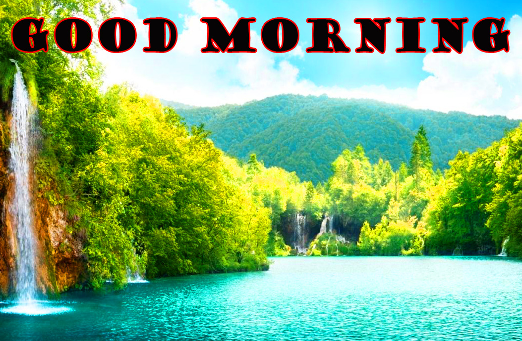 Good Morning Nature Wallpaper Pictures Free HD Download