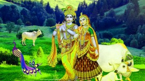 Radha krishna Images Photo Pictures Free HD Download