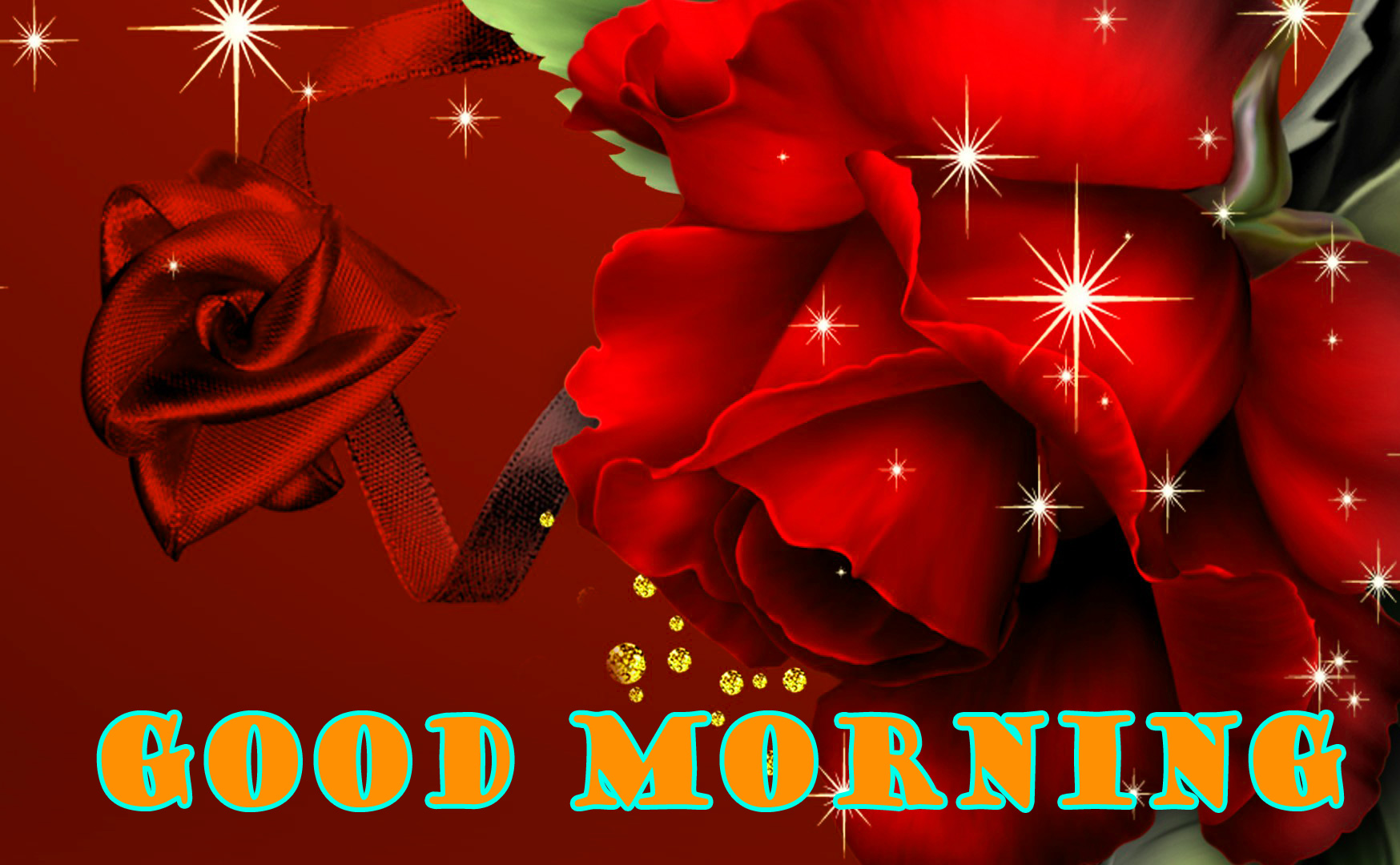 Good Morning Red Rose Photo Images For Whatsapp