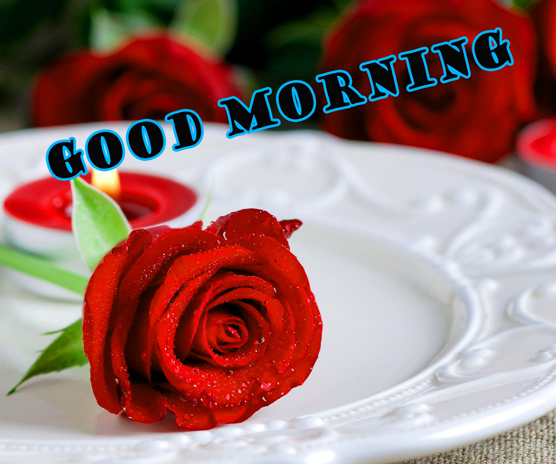 Good Morning Red Rose Wallpaper Photo HD For Whatsapp