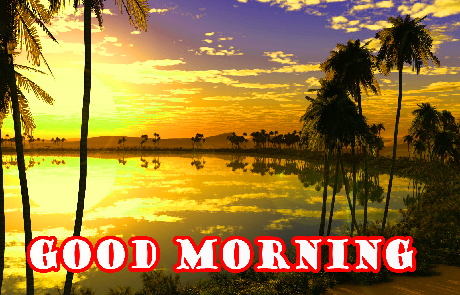 Special Wonderful Good Morning Photo Pictures Download