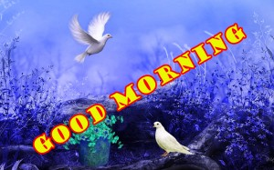 sweet good morning images Wallpaper Photo Pics Download