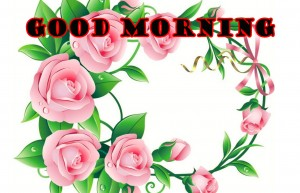 sweet good morning images Photo Pictures Free Download