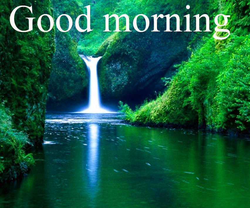 Special Good Morning Wishes Photo Images Wallpaper HD Download