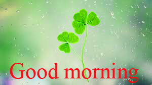 Good Morning and Good Luck Wishes For Student Wallpaper Images Download