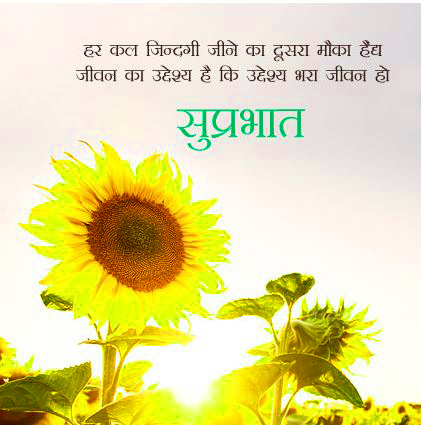 Suprabhat Images Wallpaper Pics Free Download & Share With Friend