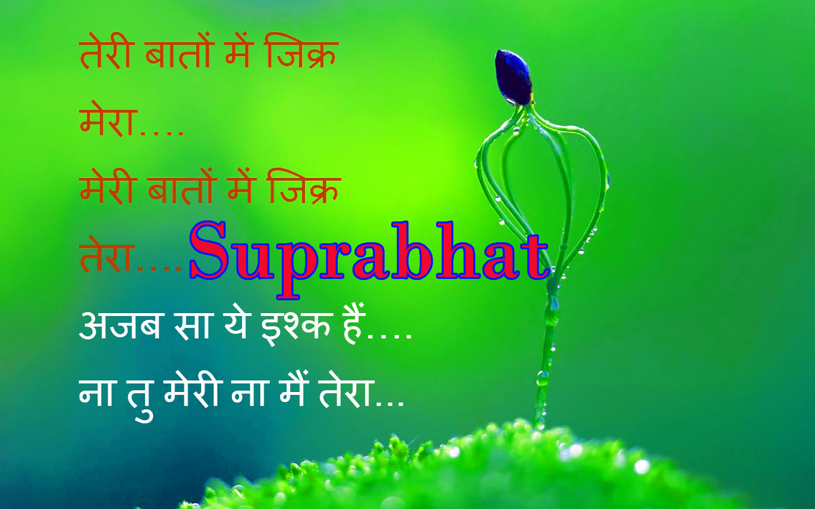 Suprabhat Images Wallpaper Photo Pictures Download