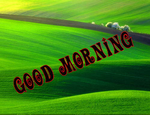 Good Morning Nature Wallpaper Photo Pics Download