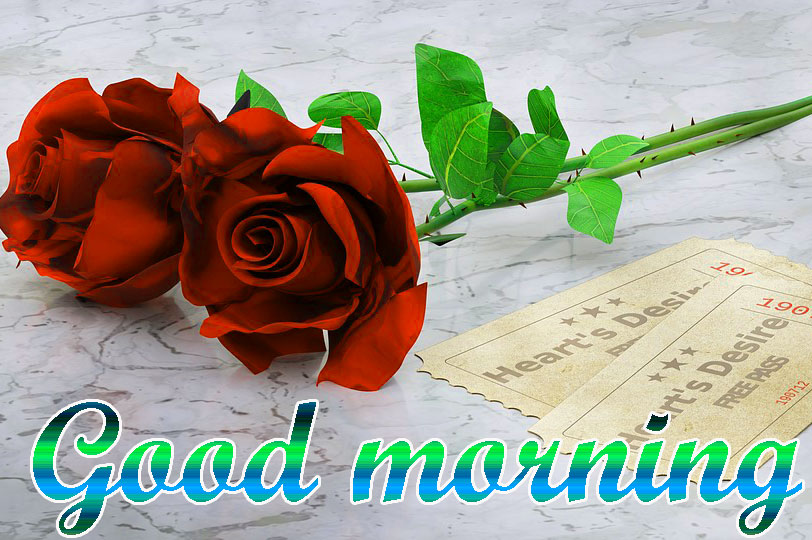 BEAUTIFUL 3D GOOD MORNING IMAGES WALLPAPER PICS WITH RE ROSE
