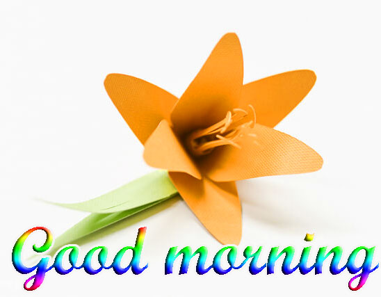 BEAUTIFUL 3D GOOD MORNING IMAGES WALLPAPER PIC FREE DOWNLOAD