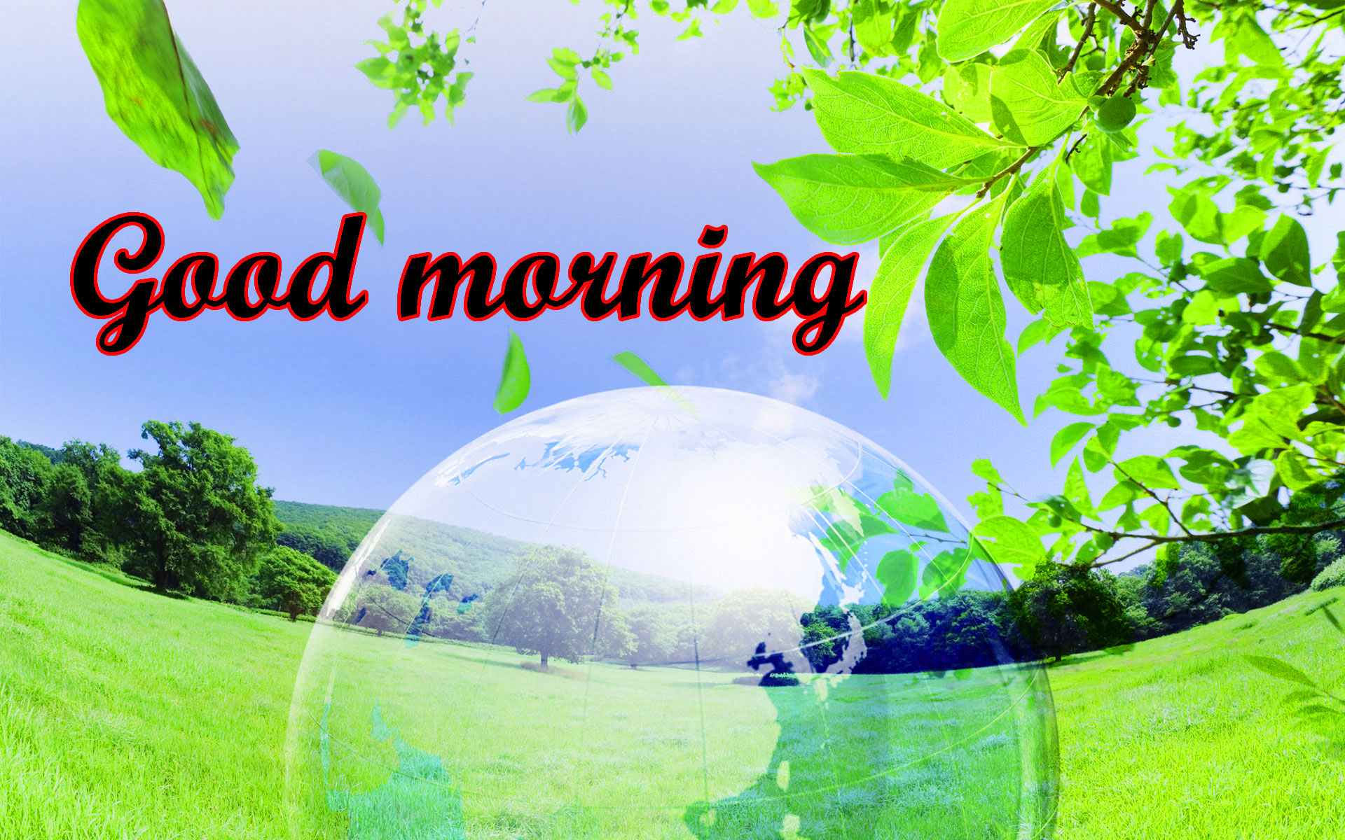BEAUTIFUL 3D GOOD MORNING IMAGES PHOTO FOR WHATSAPP