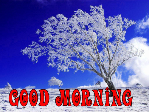 Good Morning Best Beautiful Images Pics Download