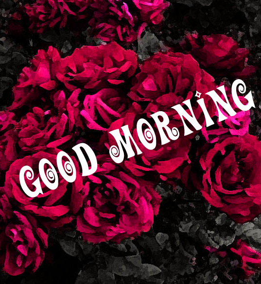 Good Morning Images Wallpaper Pic With Flower