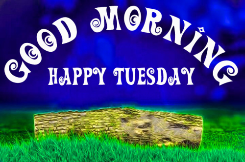 Good morning wishes on tuesday Images (5)