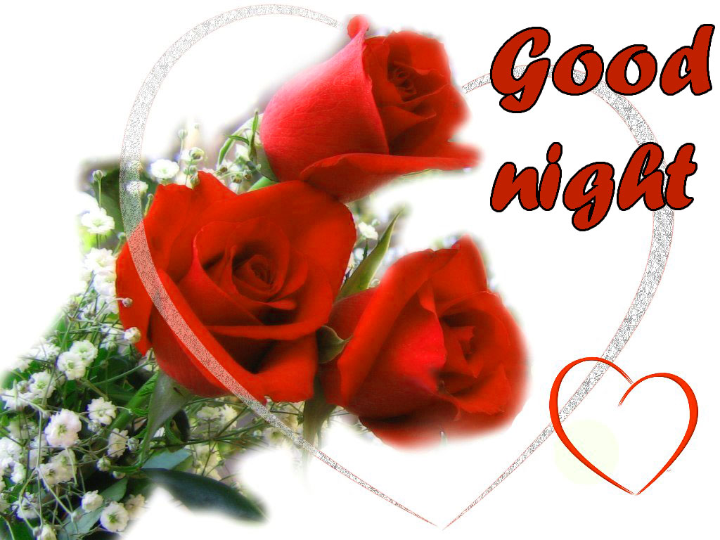 RED ROSE GOOD NIGHT WISHES IMAGES WALLPAPER PICS FOR FACEBOOK