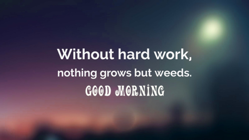 good morning motivational quotes Pictures Wallpaper