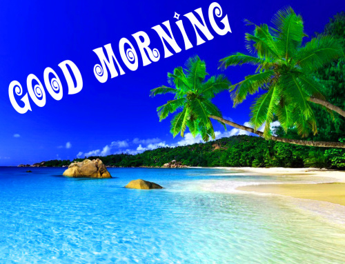 Good Morning Images Photo Wallpaper for Whatsapp