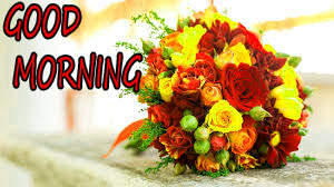 GOOD MORNING IMAGE WITH BEAUTIFUL FLOWERS NATURE PICS WALLPAPER DOWNLOAD