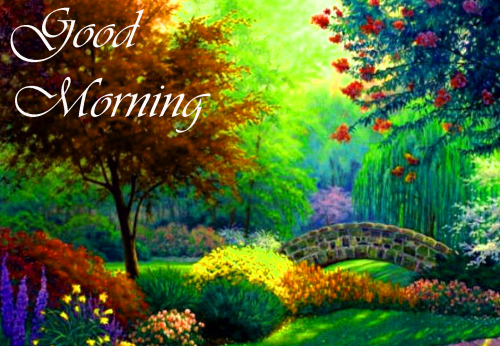 NATURE GOOD MORNING PICS IMAGES WALLPAPER FOR LOVE COUPLE