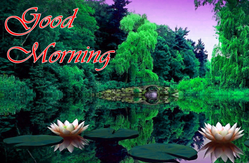 NATURE GOOD MORNING PICS IMAGES PICS FOR WHATSAPP