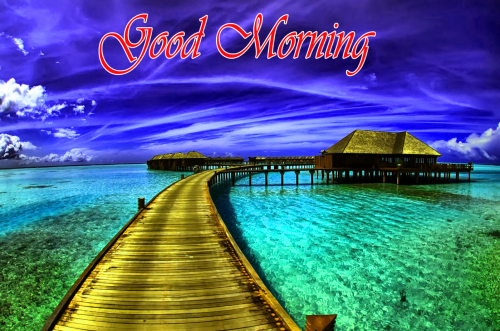 NATURE GOOD MORNING PICS IMAGES WALLPAPER FOR FACEBOOK