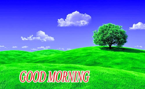 NATURE GOOD MORNING PICS IMAGES PHOTO FOR WHATSAPP HD