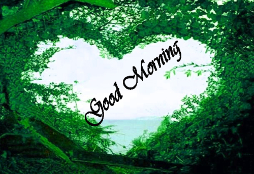 NATURE GOOD MORNING PICS IMAGES PHOTO FOR FACEBOOK