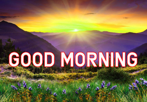FRESH SWEET GOOD MORNING IMAGES PHOTO WALLPAPER FREE DOWNLOAD