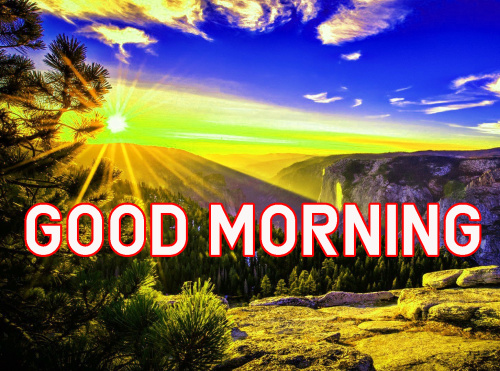 FRESH SWEET GOOD MORNING IMAGES PICTURES PHOTO FOR FRIENDS