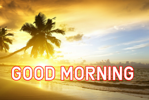 FRESH SWEET GOOD MORNING IMAGES WALLPAPER PHOTO DOWNLOAD