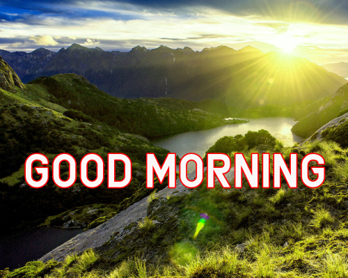 FRESH SWEET GOOD MORNING IMAGES PICTURES WALLPAPER FREE HD DOWNLOAD