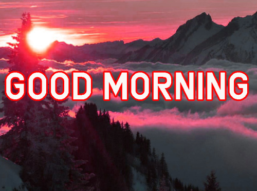 FRESH SWEET GOOD MORNING IMAGES PHOTO WALLPAPER DOWNLOAD