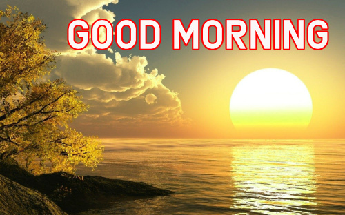 FRESH SWEET GOOD MORNING IMAGES PICS PHOTO HD