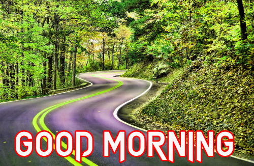 FRESH SWEET GOOD MORNING IMAGES PICTURES PHOTO FOR FACEBOOK