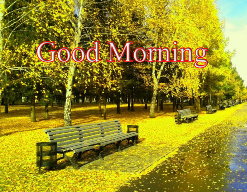 GOOD MORNING SISTER IMAGES PHOTO HD