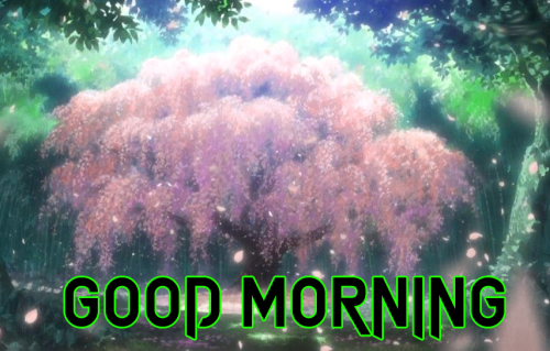 GOOD MORNING DESIGN IMAGES PHOTO PICS FOR FRIEND