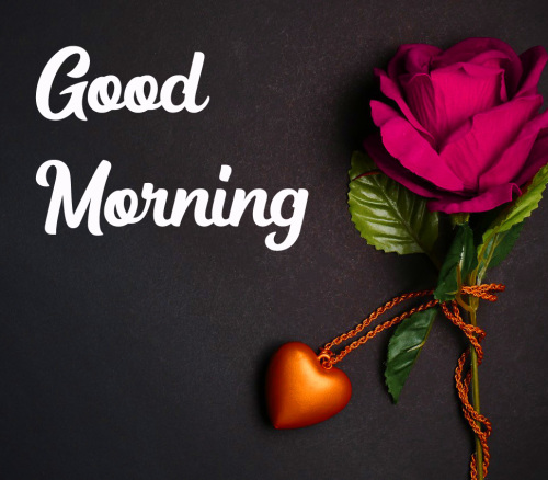 GOOD MORNING HD IMAGES PICTURES WALLPAPER PHOTO FOR WHATSAPP