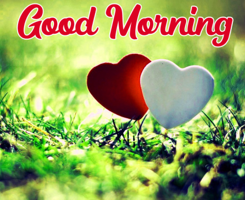 GOOD MORNING HD IMAGES WALLPAPER PHOTO DOWNLOAD