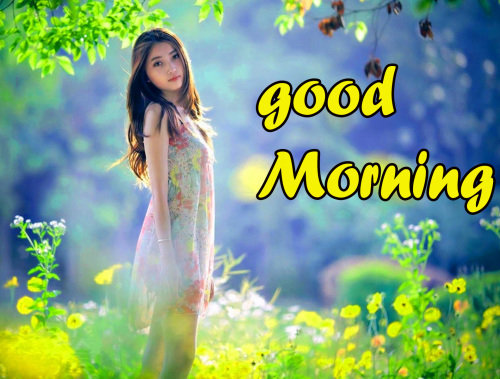 GOOD MORNING HD IMAGES WALLPAPER PHOTO FREE HD DOWNLOAD