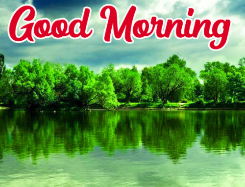 GOOD MORNING HD IMAGES WALLPAPER PHOTO FREE HD