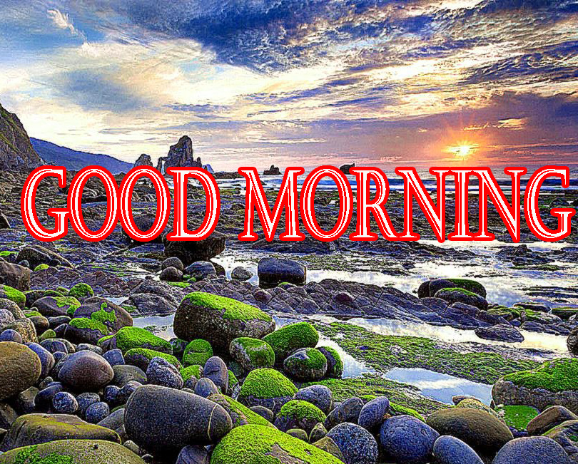 GOOD MORNING IMAGE PICTURES PHOTO DOWNLOAD HD