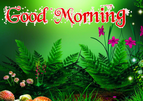 GOOD MORNING IMAGES PICTURES PICS FOR BEST FRIEND