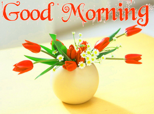 GOOD MORNING IMAGES PICTURES PICS FREE HD