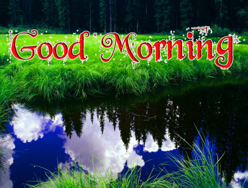 GOOD MORNING IMAGES WALLPAPER PHOTO FOR WHATSAPP