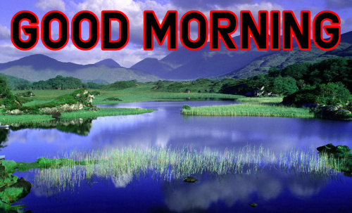 Good Morning Images For My Dear Friend (11)
